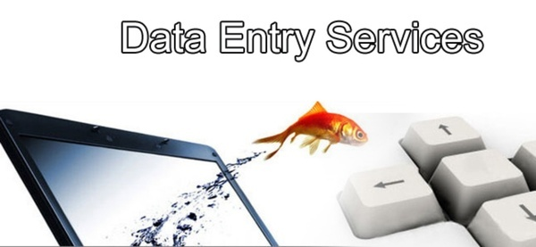 Data Entry Services In Jammu and Kashmir JK
